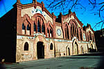 La Catedral del Vi de Pinell de Brai